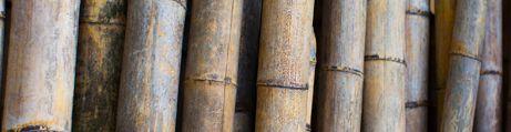 Ambience Bamboo
